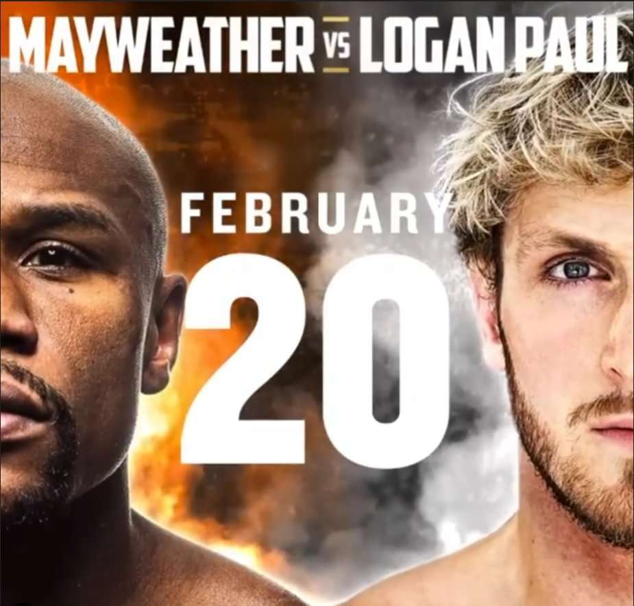 Floyd-Mayweather VS Logan-Paul Fight